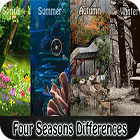 Four Seasons Differences gra
