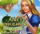 Alice's Wonderland 2: Stolen Souls Collector's Edition gra