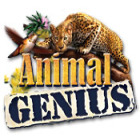 Animal Genius gra