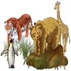 World Riddles: Animals gra
