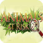 Animals At Risk gra