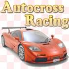 Autocross Racing gra