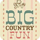 Big Country Fun gra