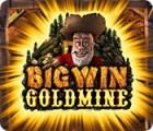 Big Win Goldmine gra