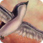 Birds Defender gra