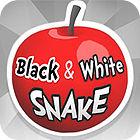 Black And White Snake gra