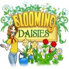 Blooming Daisies gra