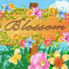 Blossom gra