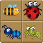 Bug Box gra