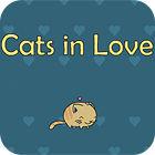 Cats In Love gra