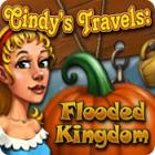 Cindy's Travels: Flooded Kingdom gra