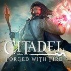 Citadel: Forged with Fire gra