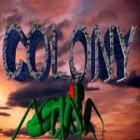 Colony gra