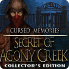 Cursed Memories: The Secret of Agony Creek Collector's Edition gra