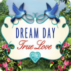 Dream Day True Love gra