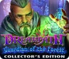 Dreampath: Guardian of the Forest Collector's Edition gra