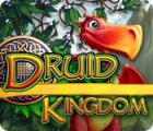 Druid Kingdom gra