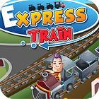 Express Train gra