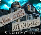 Hidden in Time: Looking-glass Lane Strategy Guide gra
