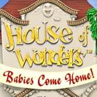 House of Wonders: Babies Come Home gra