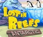 Lost in Reefs: Antarctic gra