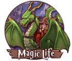 Magic Life gra