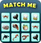 Match Me gra