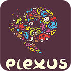 Plexus Puzzles: Rebuild the Earth gra
