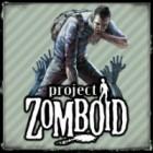 Project Zomboid gra