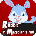 Rabbit In Magician's Hat gra