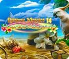 Rainbow Mosaics 14: Hawaiian Vacation gra
