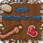 Snake - Hunting for Bugs gra