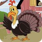 Thanksgiving The Coolest Turkey gra