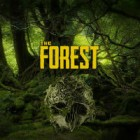 The Forest gra