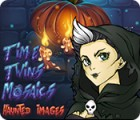 Time Twins Mosaics Haunted Images gra