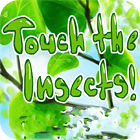 Touch the Insects gra