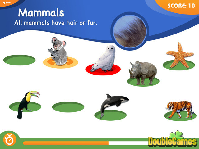Free Download Animal Genius Screenshot 1